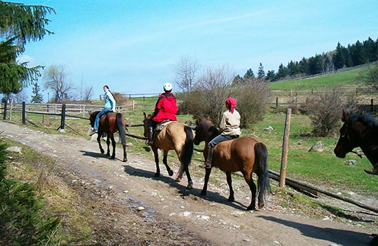 Horse-riding Trips
